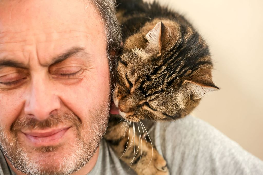 homme âgé barbu avec un chat sur l'épaule comment recommencer à 50