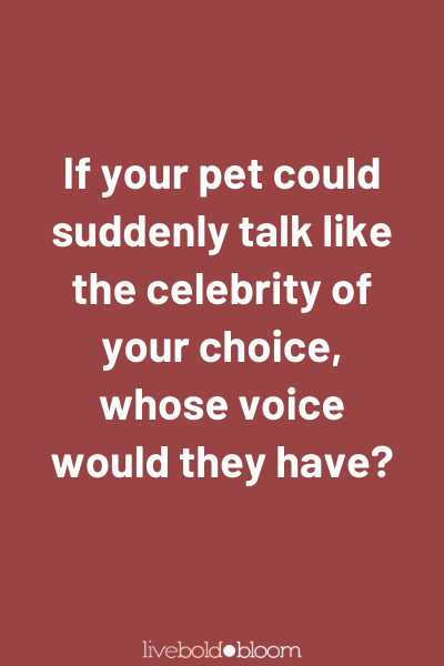 Si votre animal pouvait soudainement parler comme la célébrité de votre choix, quelle voix aurait-il? Apprenez à connaître vos questions